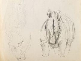Alexis Preller; Rhinoceros