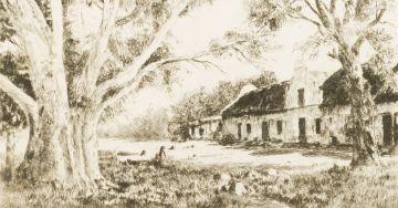 Tinus de Jongh; Farm Cape Flats