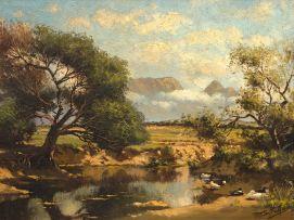 Tinus de Jongh; Ducks by a Pond