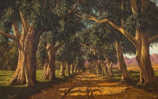 Tinus de Jongh; An Avenue of Gumtrees