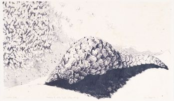 John Moore; Dreaming of Ants and Other Things