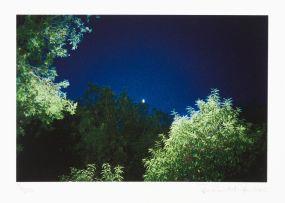 Jo Ractliffe; Night
