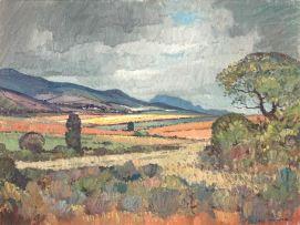 Piet van Heerden; Extensive Landscape
