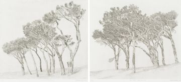 Anton Kannemeyer; Pine Trees Cape Town I; Pine Trees Cape Town II, two