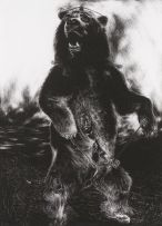 Diane Victor; Instigator