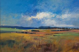 Derric van Rensburg; Farm Landscape