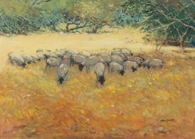 Walter Westbrook; Sheep Grazing