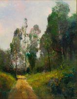 Errol Boyley; Country Road, Springvale Farm, Rosetta