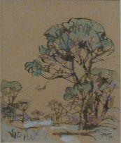 Gregoire Boonzaier; Cape Pines