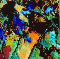 Marcus Neustetter; Somewhere - Sumbandila satellite perspectives 4