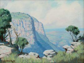 Willem Hermanus Coetzer; Oribi Gorge