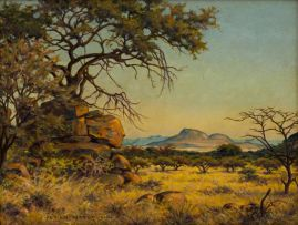 Erich Mayer; The Bushveld near Potgietersrust