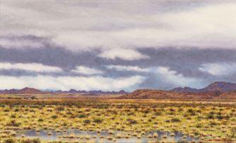 Martin Koch; Veld Landscape