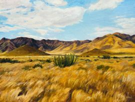 Walter Meyer; Namib, with Euphorbia