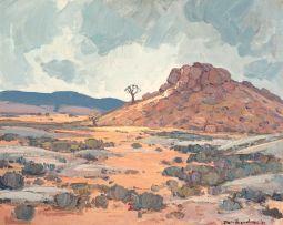Piet van Heerden; Rocky Hill and Kokerboom, Namaqualand (O'okiep District)
