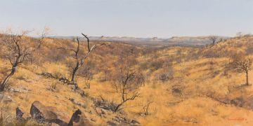 Francois Koch; Landscape, Doringveld, Mezina (sic)