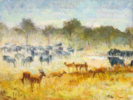 Zakkie Eloff; Impala and Wildebeest