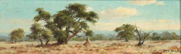 Otto Klar; Bushveld Landscape
