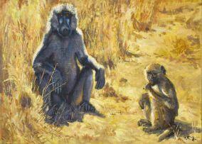 Zakkie Eloff; Baboons