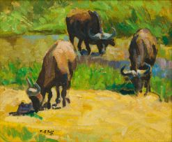 Zakkie Eloff; Three Buffalo