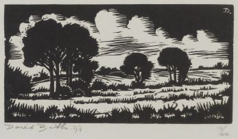 David Botha; Landscape