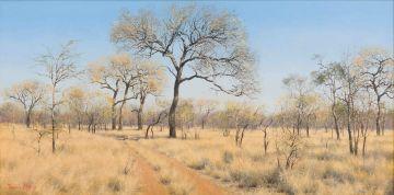 Francois Koch; Bushveld Scene