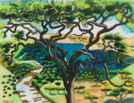 Nicky Leigh; Thorn Tree with Umgeni River