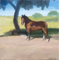Clare Menck; Bay Horse