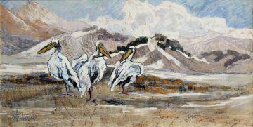 Arnfried Blatt; Pelicans