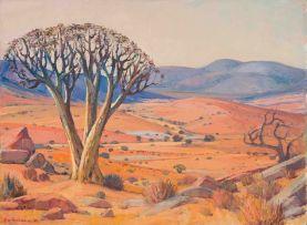 Piet van Heerden; Kokerboom
