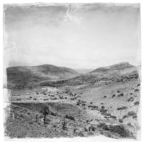 Stephen Inggs; Landscape