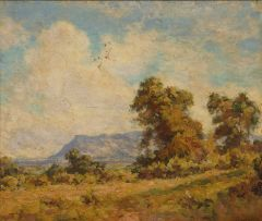 Edward Roworth; A View of Constantia