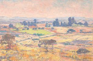 Jacob Hendrik Pierneef; Extensive Landscape