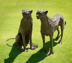 David Tomlinson; Cheetah Pair
