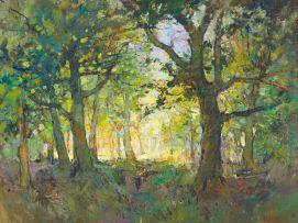 Titta Fasciotti; Forest Landscape