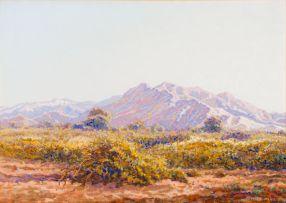 Johannes Blatt; South West African Landscape