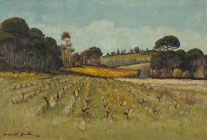 David Botha; Vineyard after Harvest