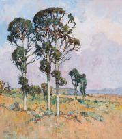 Conrad Theys; Bloekombome naby Paarl (Bluegum Trees near Paarl)