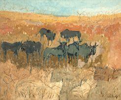 Gordon Vorster; Blue Wildebeest