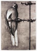 William Kentridge; Bird Catcher