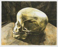 Walter Oltmann; Child Skull B