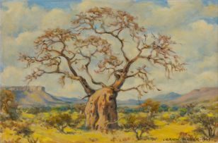 Erich Mayer; Landscape  with Baobab