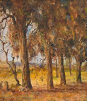Pieter Wenning; Blue Gums, Pretoria
