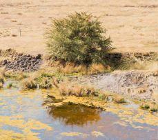 Sipho Ndlovu; Waterhole in Fouriesburg, Easten (sic) F.S.