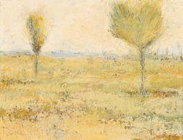 Pieter van der Westhuizen; Landscape