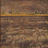 Brad Gray; Karoo Landscape III