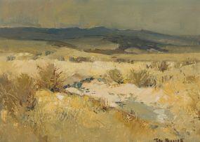 Titta Fasciotti; Landscape