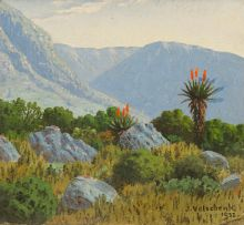 Jan Ernst Abraham Volschenk; Where the Aloe Grows near the Langeberge, Riversdale