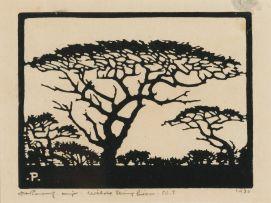 Jacob Hendrik Pierneef; Wilde Sering Boom (sic), NT (Nilant 98)