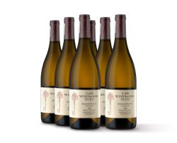 Paul Cluver; CWG The Wagon Trail Chardonnay; 2009; 6 (1 x 6); 750ml